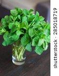 fresh mint leaves in the glass... | Shutterstock . vector #285018719