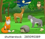Forest With Cartoon Animals...