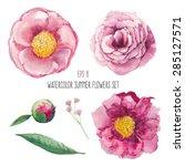 watercolor peony  wild flowers... | Shutterstock .eps vector #285127571