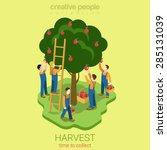 Apple Harvest Collect Season...