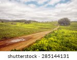 beautiful spring countryside... | Shutterstock . vector #285144131