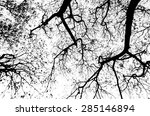 Abstract Silhouette Of Trees On ...