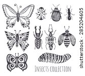 collection of hand drawing... | Shutterstock .eps vector #285204605