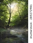 River Through Green Forest In...