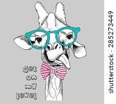 portrait of a funny giraffe in... | Shutterstock .eps vector #285273449