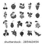 berries silhouettes icons set.... | Shutterstock .eps vector #285463454