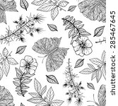 seamless pattern with... | Shutterstock .eps vector #285467645