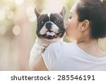 French Bulldog Is Cute Kissing...