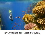 young woman snorkeling close to ... | Shutterstock . vector #285594287