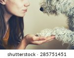 Stock photo woman s hand and dog s paw 285751451