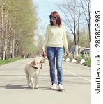 Stock photo owner and labrador retriever dog outdoors walking in the city 285808985