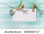 Stock photo fresh blue spring muscaries and empty tag on clothes line on turquoise painted wooden 285848717