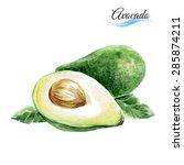 watercolor fruit avocado... | Shutterstock .eps vector #285874211