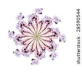 Fractal Flower On The White...