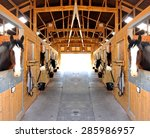 at the stables  selective focus ... | Shutterstock . vector #285986957