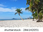 Coconut Palm And White Sand On...
