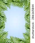 palm leaves background.... | Shutterstock .eps vector #286165844