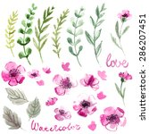 set of flowers painted in... | Shutterstock . vector #286207451