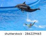 hong kong   may 6  dolphins and ... | Shutterstock . vector #286229465