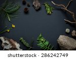 Nature Details Collection  ...