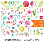 Stock vector watercolor flowers collection for different design over white vector 286243499