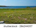 Heath Seaside Beach Landscape...