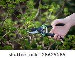 working in the garden | Shutterstock . vector #28629589