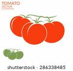 tomato. vector illustration | Shutterstock .eps vector #286338485