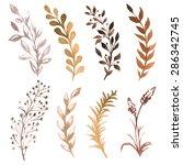vector set of flowers painted... | Shutterstock .eps vector #286342745