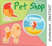 parrot  poodle and gold fish in ... | Shutterstock .eps vector #286372607