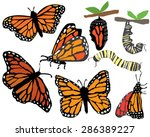 Quirky Hand Drawn Monarch...