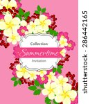 summertime collection. romantic ... | Shutterstock .eps vector #286442165