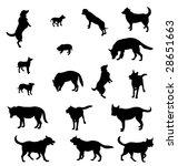 seventeen contours of dogs  ... | Shutterstock .eps vector #28651663