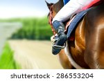 running racing thoroughbred horse coming first on hippodrome racetrack detail