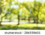 blur natural and light...   Shutterstock . vector #286558601