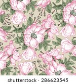 beautiful vintage background... | Shutterstock .eps vector #286623545