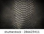 Black Snakeskin Pattern Textur...