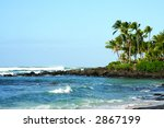 Palm trees in Oahu, Hawaii's North Shore - stock photo