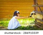 Cute Girl  Kid Feeding Lamb...
