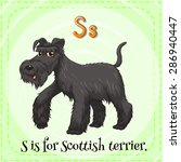 Flashcard Of A Letter S With A...