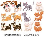 Stock vector different pecies of dogs and cats 286961171