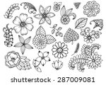 vector set of doodle flowers | Shutterstock .eps vector #287009081