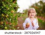 Cute Little Girl Picking Apple...
