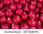 Red European Radishes   Red...