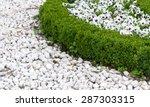 White Pebbles And Boxwood Shrubs