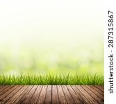 fresh spring grass with green... | Shutterstock . vector #287315867