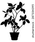 tree  flower ficus elastica   ... | Shutterstock .eps vector #287334395