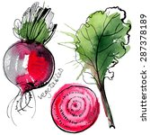 beet painted with watercolors... | Shutterstock .eps vector #287378189