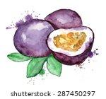 watercolor hand drawn...   Shutterstock .eps vector #287450297
