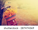 vintage bicycle with flowers on ... | Shutterstock . vector #287474369